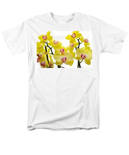 Yellow Beauties Men's T-Shirt  (Regular Fit) by Tine Nordbred