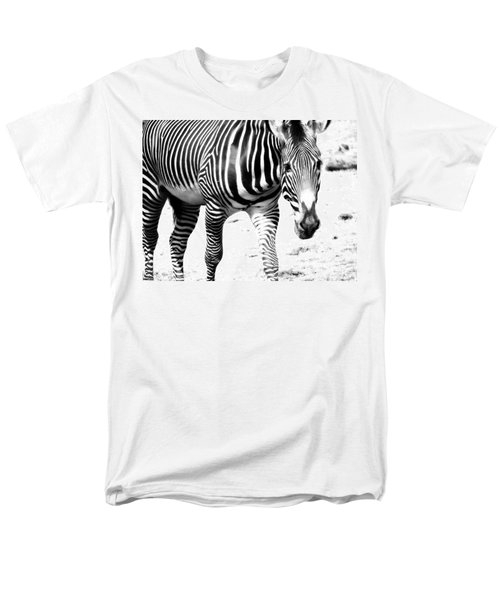 Zebra Men's T-Shirt  (Regular Fit) by Michelle Calkins
