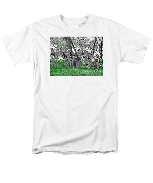 Zebras Men's T-Shirt  (Regular Fit) by Kathy Churchman