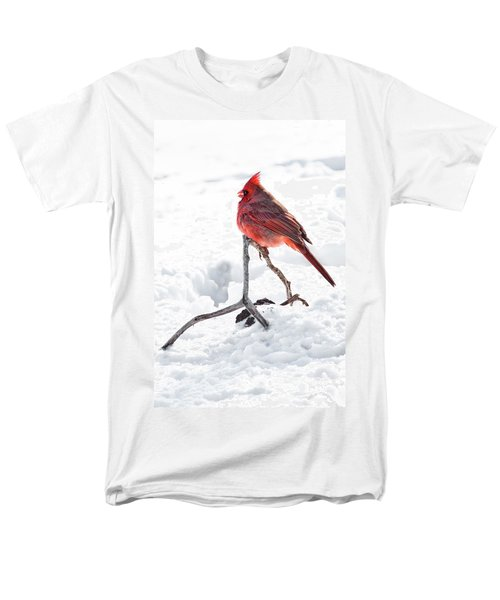 Men's T-Shirt  (Regular Fit) featuring the photograph Cardinal's Song by Tamyra Ayles