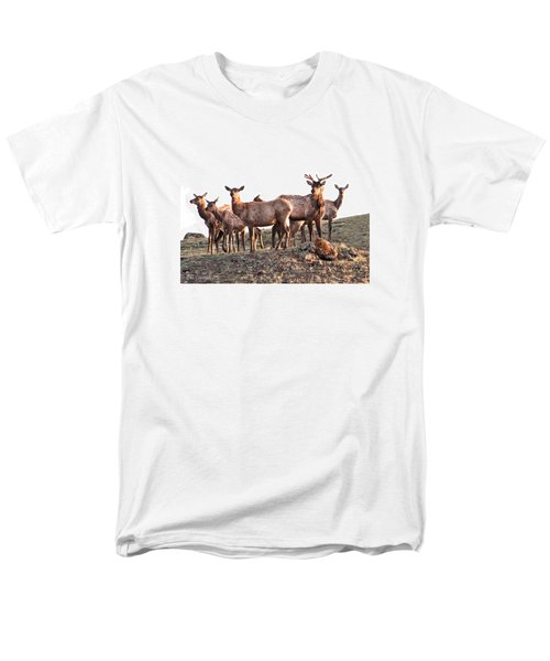 Early Morning Herd Men's T-Shirt  (Regular Fit) by CR  Courson