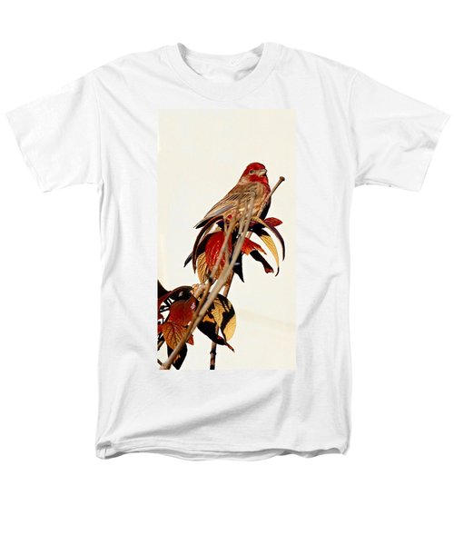 Men's T-Shirt  (Regular Fit) featuring the photograph House Finch Perch by Elizabeth Winter