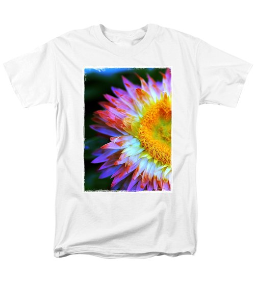 Strawflower Men's T-Shirt  (Regular Fit) by Judi Bagwell