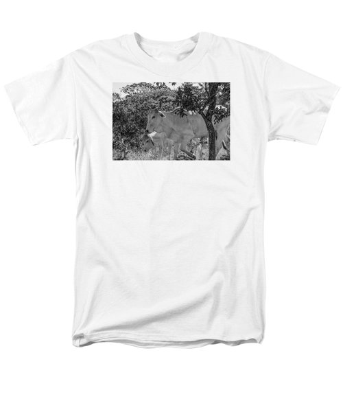 Wildlife Men's T-Shirt  (Regular Fit) by Daniel Precht