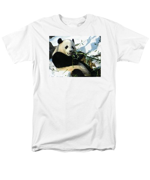 Bao Bao Sittin' In The Snow Taking A Bite Out Of Bamboo1 Men's T-Shirt  (Regular Fit) by Emmy Marie Vickers