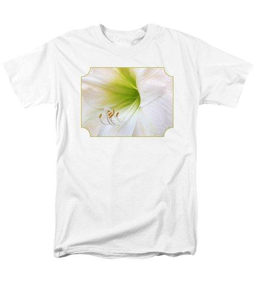 Alluring Amaryllis Men's T-Shirt  (Regular Fit) by Gill Billington