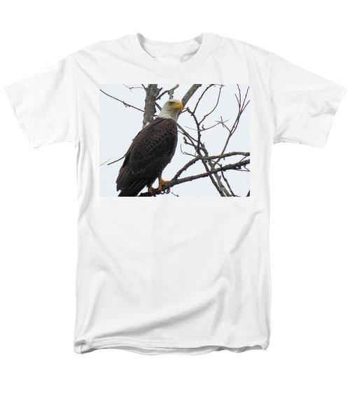American Bald Eagle Pictures Men's T-Shirt  (Regular Fit) by Scott Cameron