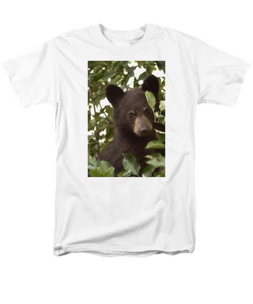 Bear Cub In Apple Tree7 Men's T-Shirt  (Regular Fit) by Loni Collins