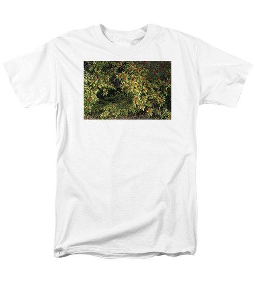 Berry Spread Men's T-Shirt  (Regular Fit) by Deborah  Crew-Johnson