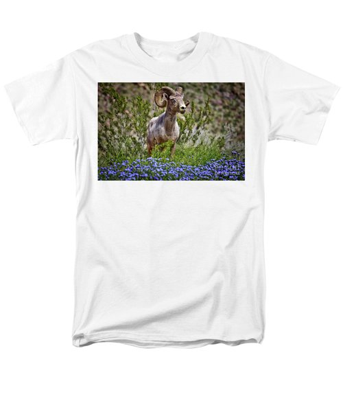 Blooms And Bighorn In Anza Borrego Desert State Park  Men's T-Shirt  (Regular Fit) by Sam Antonio Photography