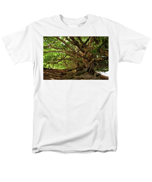 Branches And Roots Men's T-Shirt  (Regular Fit) by James Eddy