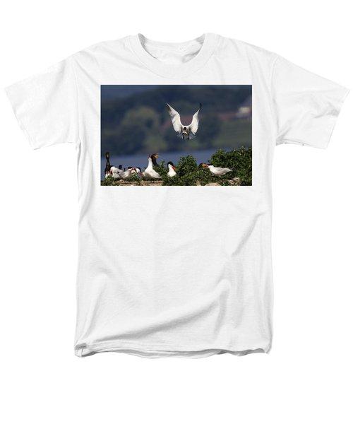 Caspian Tern Colony Men's T-Shirt  (Regular Fit) by Gary Hall