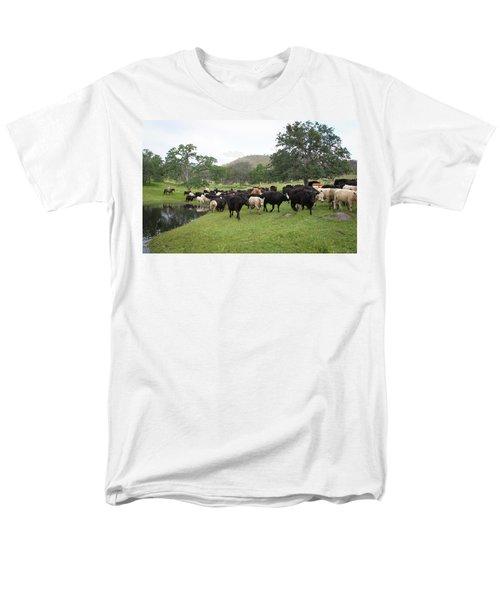 Cattle Men's T-Shirt  (Regular Fit)