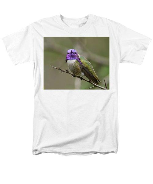 Costa's Hummingbird, Solano County California Men's T-Shirt  (Regular Fit) by Doug Herr