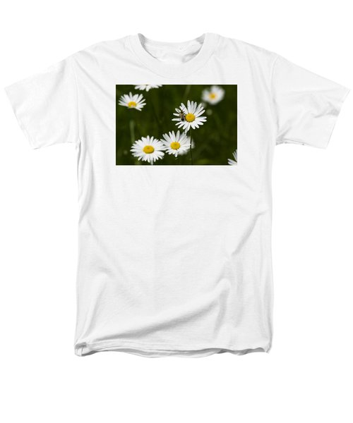 Daisy Visitor Men's T-Shirt  (Regular Fit) by Dan Hefle