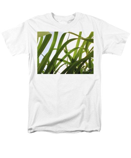 Dancing Bamboo Men's T-Shirt  (Regular Fit) by Rebecca Harman