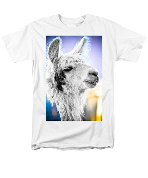 Dirtbag Llama Men's T-Shirt  (Regular Fit) by TC Morgan