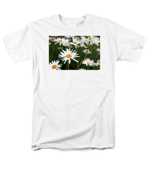 Field Of Daisies Men's T-Shirt  (Regular Fit) by Dorothy Cunningham