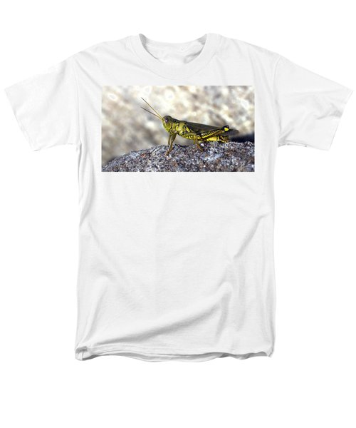 Grasshopper Men's T-Shirt  (Regular Fit) by Joseph Skompski