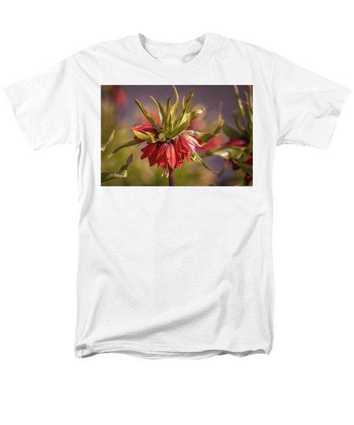 Imperial Crown #g3 Men's T-Shirt  (Regular Fit)