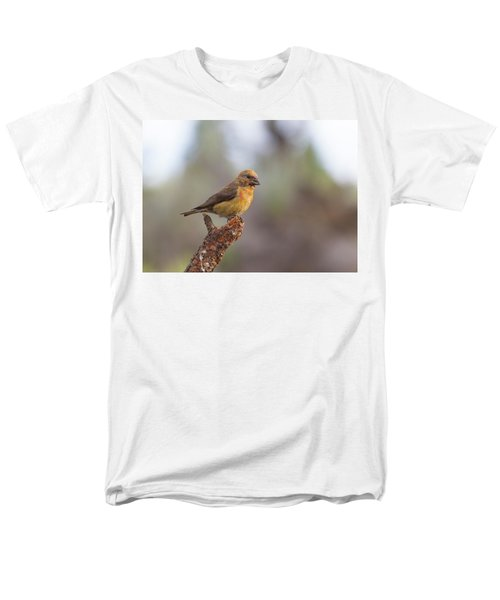 Juvenile Male Red Crossbill Men's T-Shirt  (Regular Fit) by Doug Lloyd