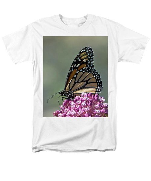 King Of The Butterflies Men's T-Shirt  (Regular Fit) by Stephen Flint