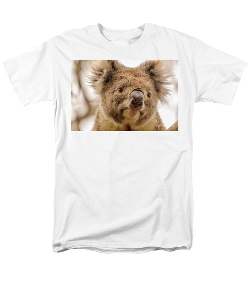 Koala 4 Men's T-Shirt  (Regular Fit) by Werner Padarin
