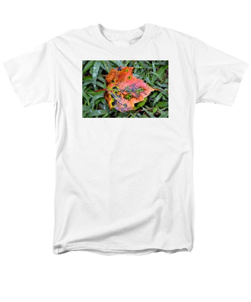 Leaf It Be Men's T-Shirt  (Regular Fit) by Lew Davis