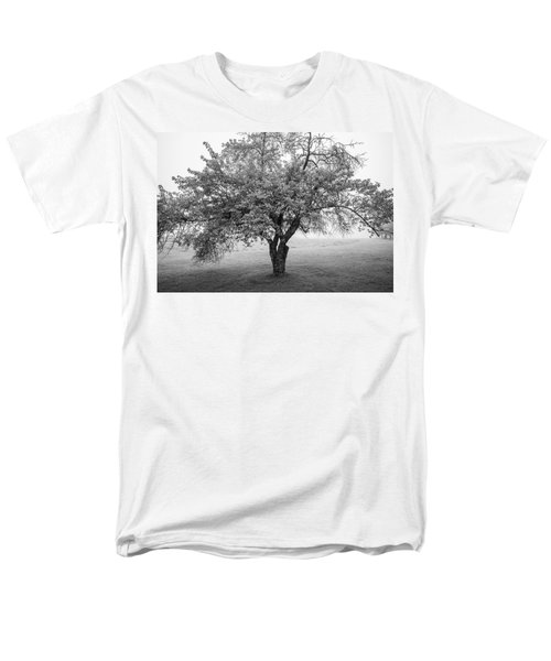 Men's T-Shirt  (Regular Fit) featuring the photograph Maine Apple Tree In Fog by Ranjay Mitra