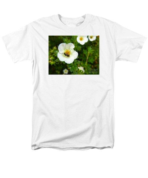 Massachusetts Carpenter Bee Men's T-Shirt  (Regular Fit) by KD Johnson