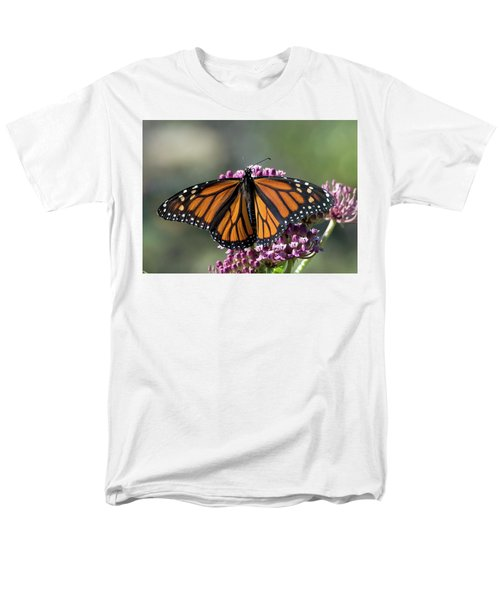 Monarch Butterfly Men's T-Shirt  (Regular Fit) by Stephen Flint