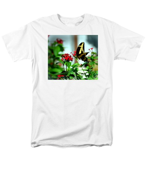 Nature's Beauty Men's T-Shirt  (Regular Fit) by Edgar Torres