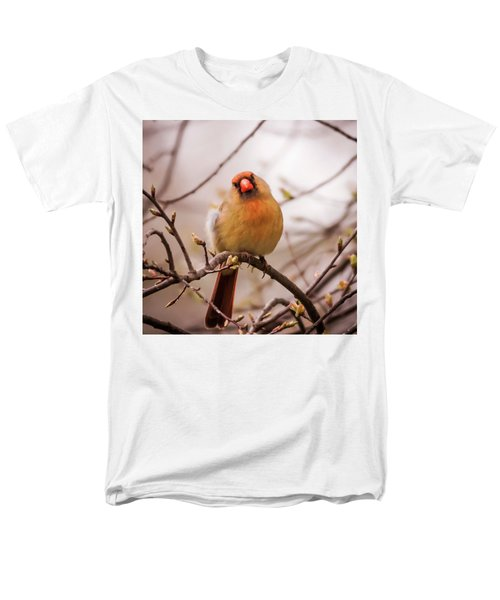 Men's T-Shirt  (Regular Fit) featuring the photograph Northern Female Cardinal Pose by Terry DeLuco