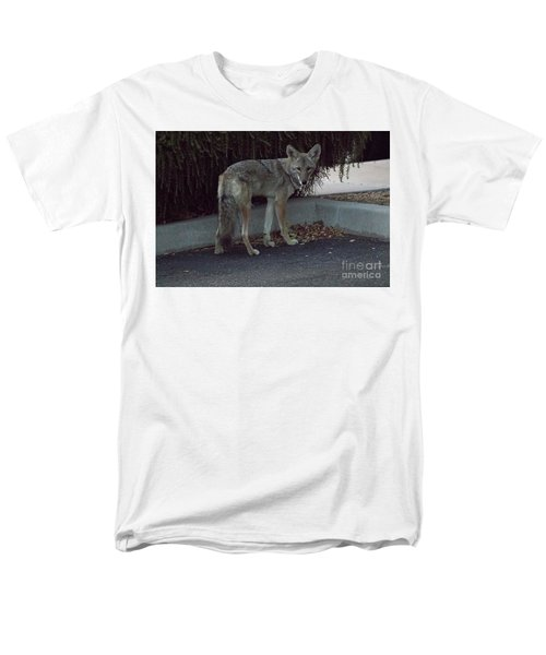 Men's T-Shirt  (Regular Fit) featuring the photograph On The Prowl 1 by Anne Rodkin