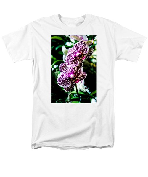 Orchid - Pla236 Men's T-Shirt  (Regular Fit) by G L Sarti