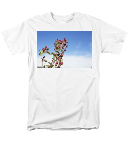 Organic Handpicked Home Orchard Raspberries,blackberries From Bu Men's T-Shirt  (Regular Fit) by Jingjits Photography