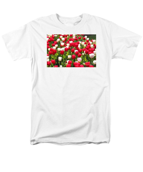 Red And White Tulips Men's T-Shirt  (Regular Fit) by Bev Conover