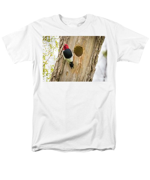 Red-headed Woodpecker At Home Men's T-Shirt  (Regular Fit)