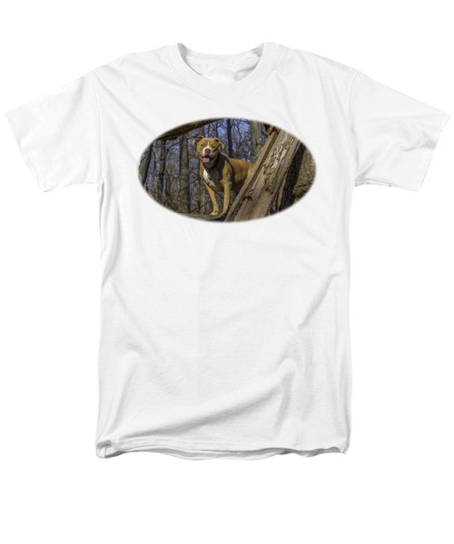 Remy In Tree Oil Paint For Shirts Mainly Men's T-Shirt  (Regular Fit)