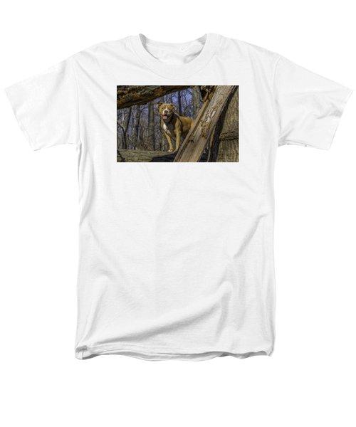 Remy In Tree Oil Paint More Pop Men's T-Shirt  (Regular Fit)