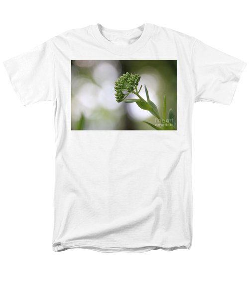 Sedum Buds At Late Evening Men's T-Shirt  (Regular Fit) by Marilyn Carlyle Greiner