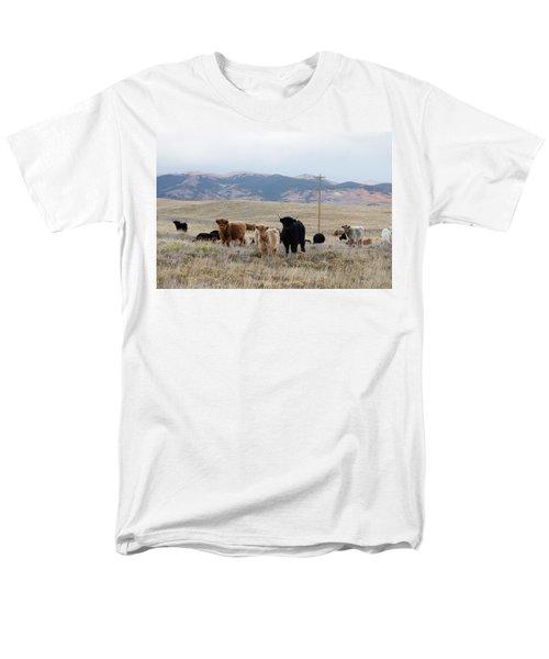 Shaggy-coated Cattle Near Jefferson Men's T-Shirt  (Regular Fit) by Carol M Highsmith