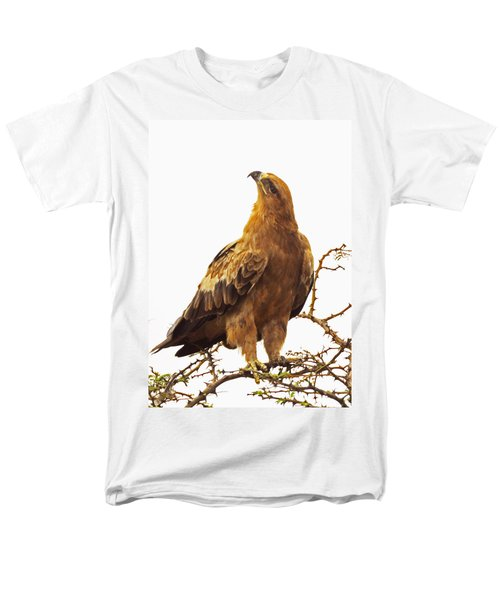 Tawny Eagle Men's T-Shirt  (Regular Fit) by Patrick Kain