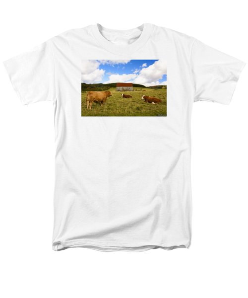 The Cows Of Mabou Men's T-Shirt  (Regular Fit) by Ken Morris
