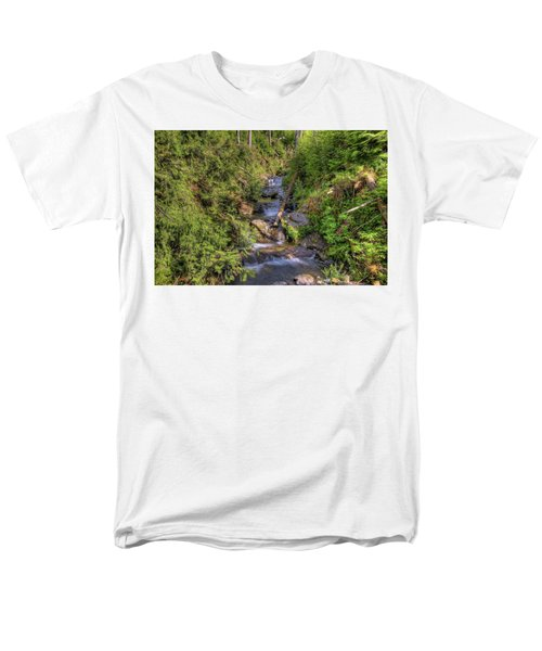 The Quinault Stream 2 Men's T-Shirt  (Regular Fit) by Richard J Cassato
