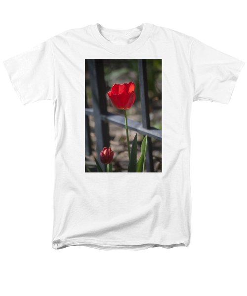 Tulip And Garden Fence Men's T-Shirt  (Regular Fit) by Morris  McClung