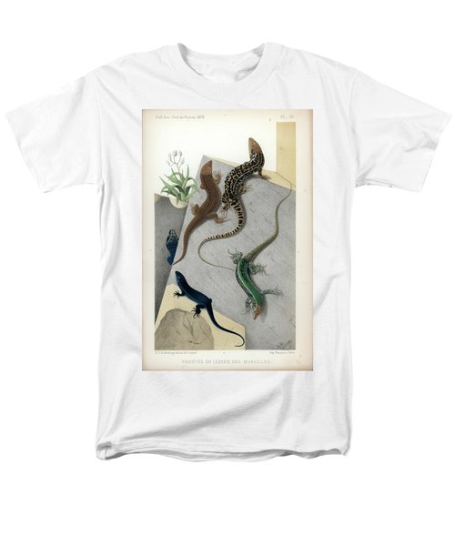 Men's T-Shirt  (Regular Fit) featuring the drawing Varieties Of Wall Lizard by Jacques von Bedriaga