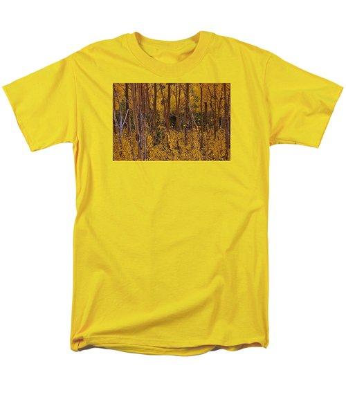 Autumn Colors Men's T-Shirt  (Regular Fit)