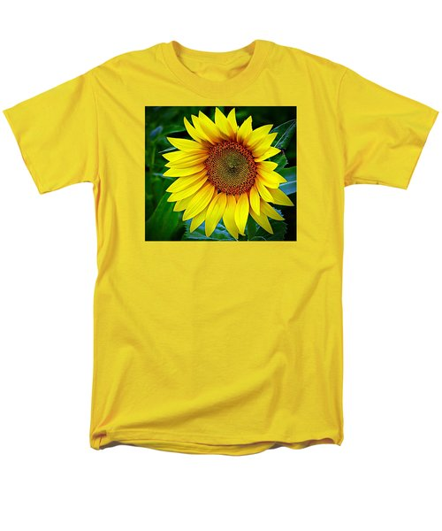 Brighten Your Day Men's T-Shirt  (Regular Fit) by Karen McKenzie McAdoo