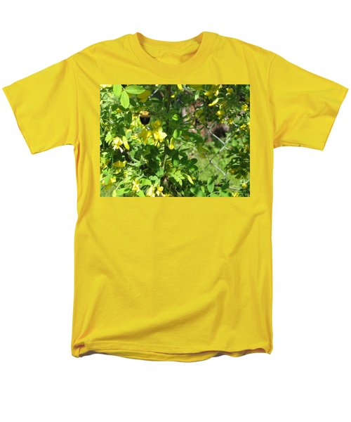 Bumblebee In Flight In Yellow Flowers Men's T-Shirt  (Regular Fit) by Barbara Yearty